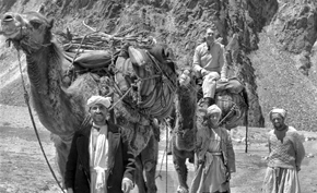Froelich Rainey, Director of the University of Pennsylvania Museum, with camel nomads.